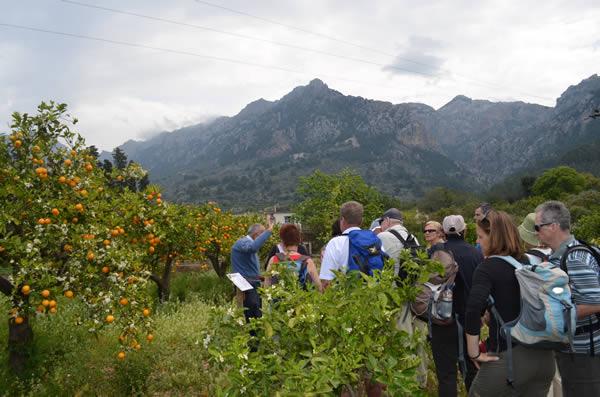 Besucher der Finca ECO Vinyassa lauschen den Erzählungen von Joan, dem Besitzer