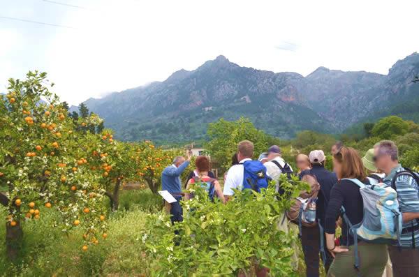 Visitantes de ECO-Vinyassa escuchan las explicaciones de Joan, el propietario