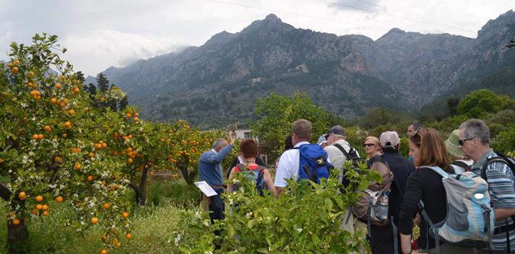 ECO Turismo im Tal von Sóller