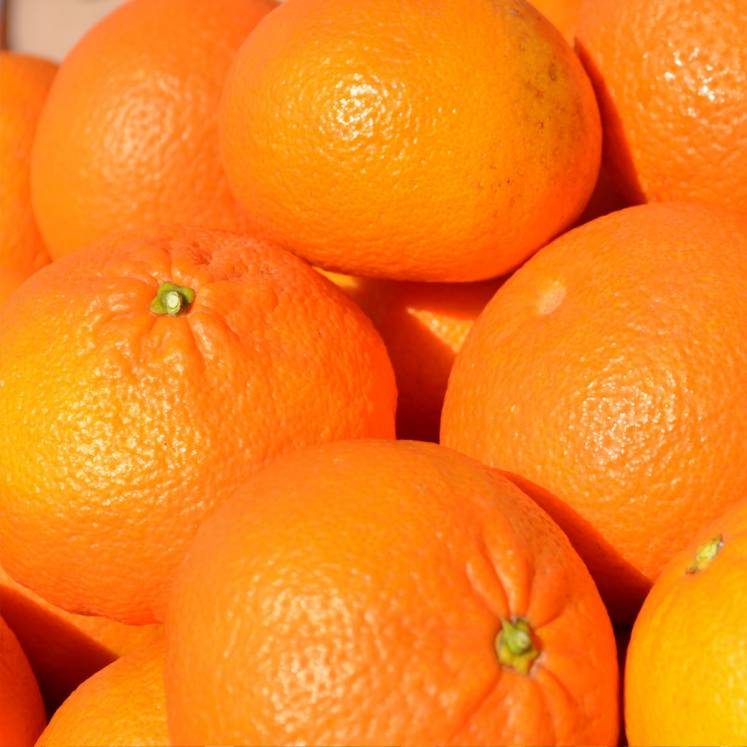 Ortanique Oranges 10kg box