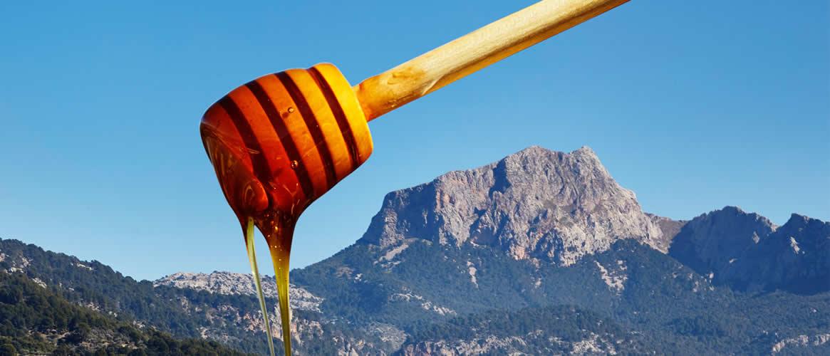 Honiglöffel aus Buchenholz