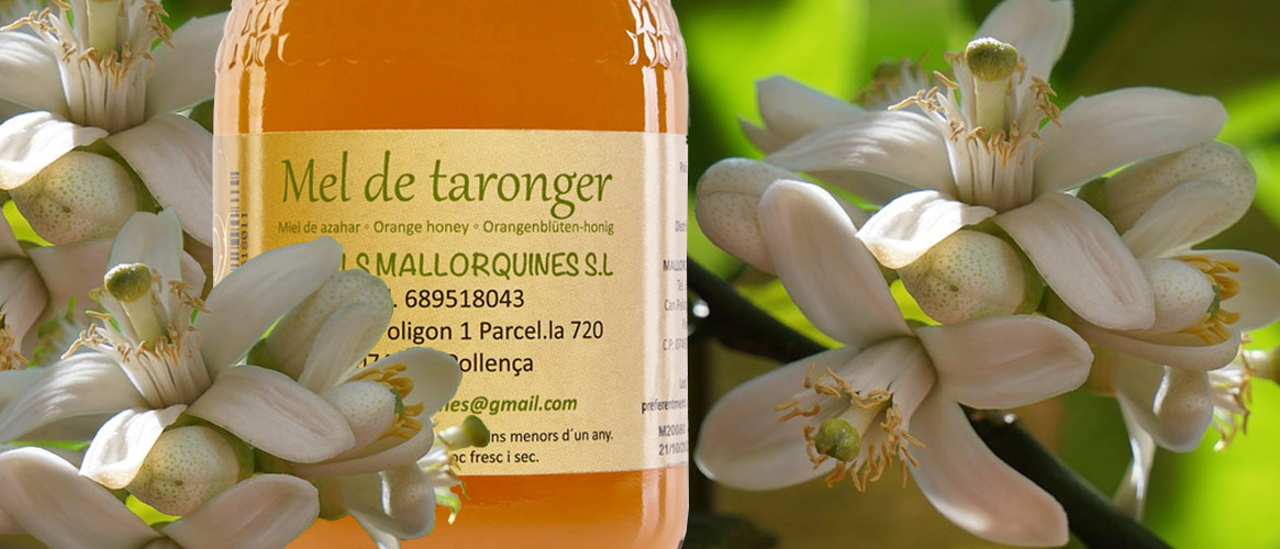 Orangenblütenhonig Mel de taronger