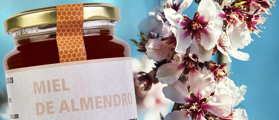 Ferrerico Mandelblütenhonig Miel de Almendro