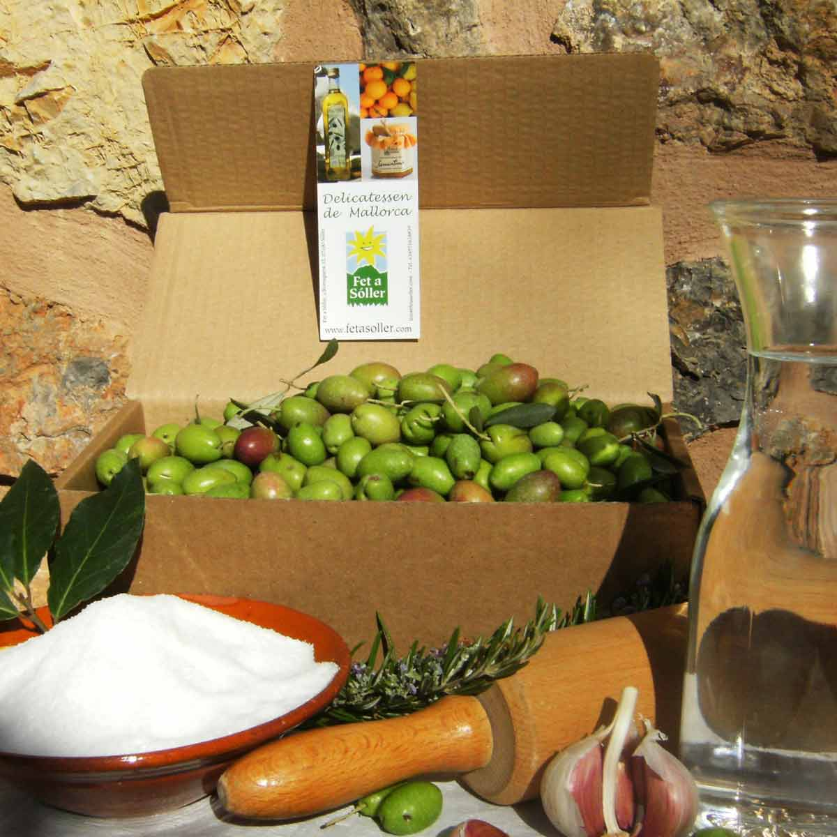 Fresh green olives from Mallorca for marinating