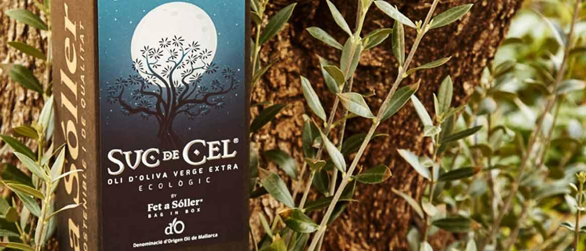 BIO Suc de Cel 1,5 L Olivenöl Virgen Extra D.O.