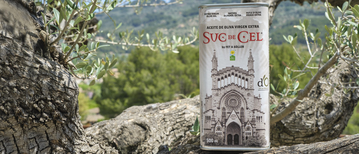 Suc de Cel Coupage olive oil Virgen extra D.O.