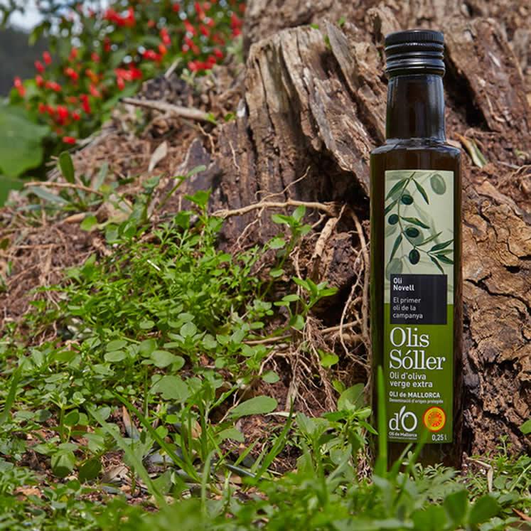 Olis Sóller Olive Oil Oli Novell Virgen Extra D.O.
