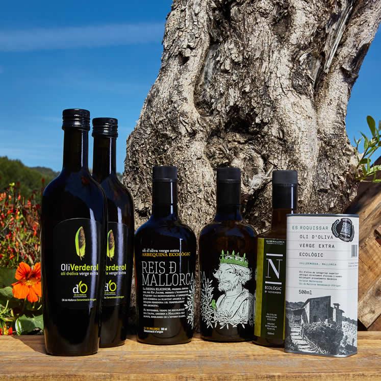 Huile d'Olive vierge écologique - Boîte de dégustation