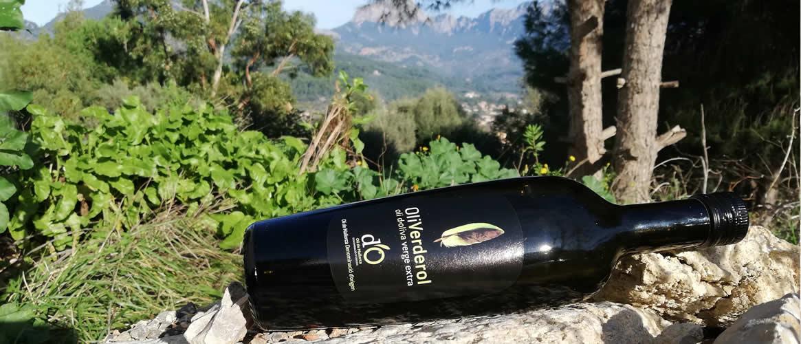 Oli Verderol Organic Olive Oil Virgen Extra D.O.