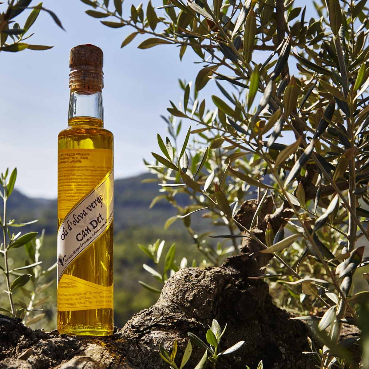Can Det Olivenöl Virgen