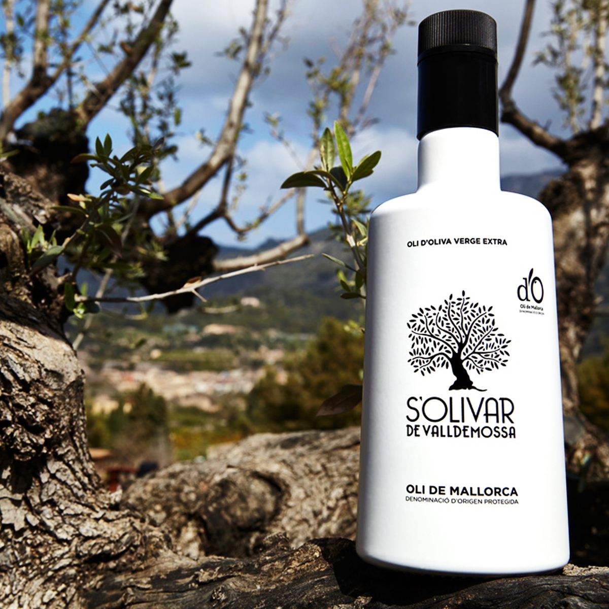 Extra Virgin Olive Oil Oli s'Olivar de Valldemossa