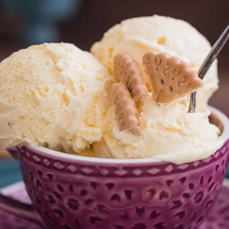 Eiscreme Vanille Geschmack Gourmet Gelat Sóller 500ml