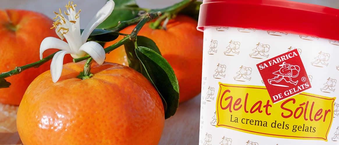 Gelat Sóller Mandarina Sorbet vegan   500ml