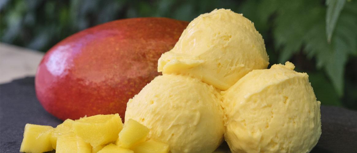 Gelat Sóller veganes Mango Sorbet 500ml