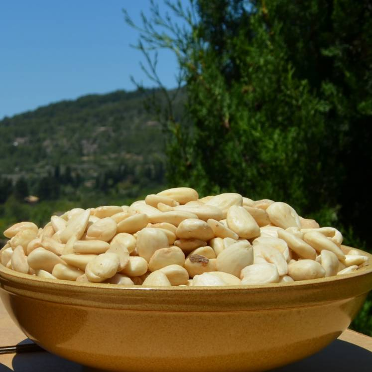 Sweet Camp Mallorqui Organic Almonds roasted raw 500g