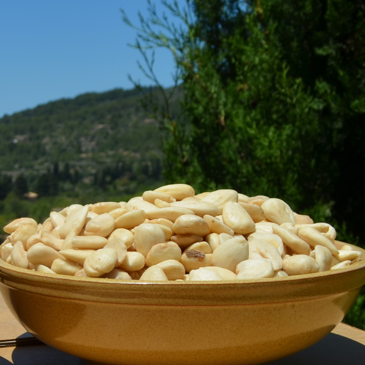 Camp Mallorquí sweet raw peeled almonds 500g