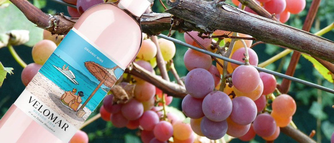 Can Axartell Velomar vino rosado ECO