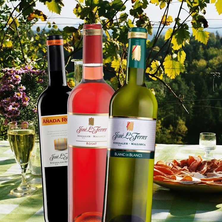 Sommer Paket 12 x Wein der Bodegas Ferrer