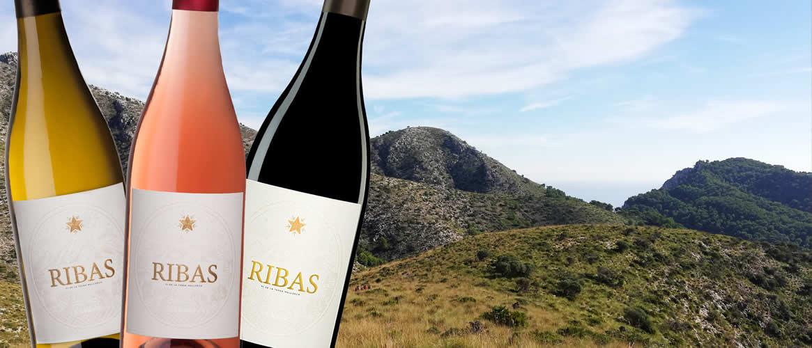 12 x Bio Wein der Bodegas Ribas