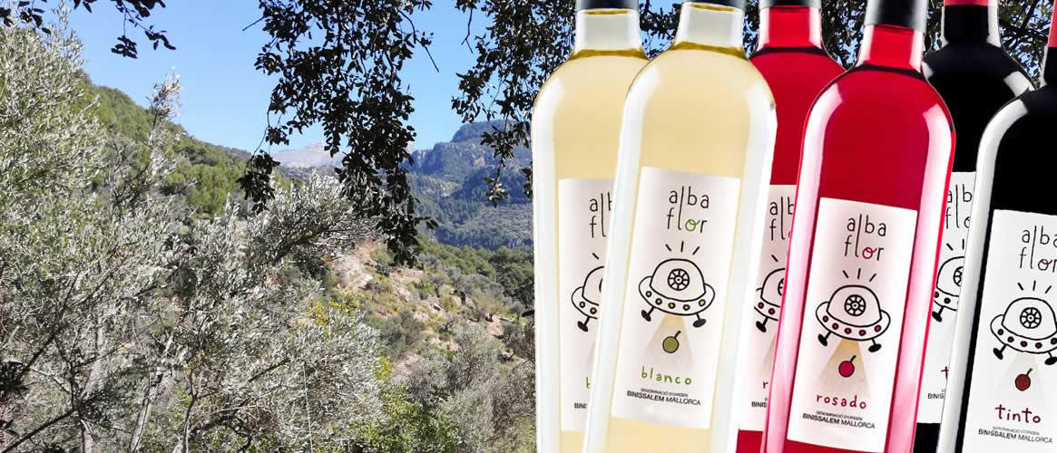 12er Weinpaket Albaflor Vins Nadal D.O. Binissalem