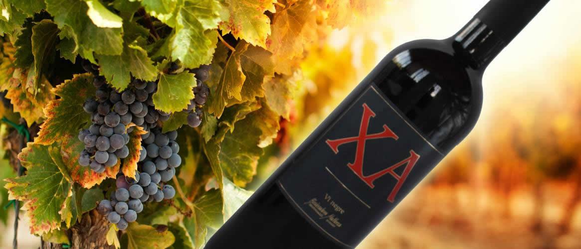 XA, Majorca red wine, Bodega Ca\\'n Verdura, D.O. Binissalem / Mallorca