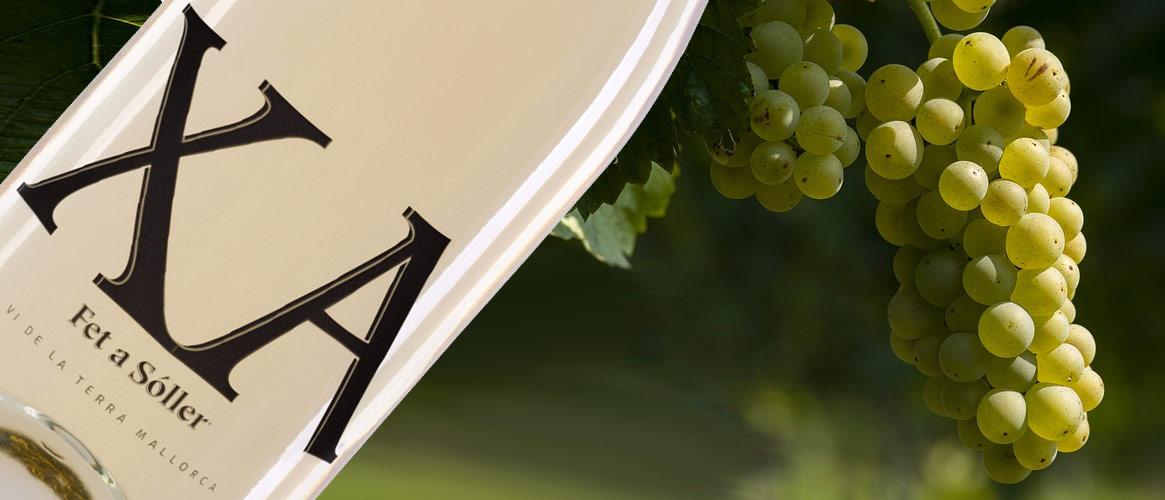 Xa blanc Vi de la Terra Mallorca Weißwein