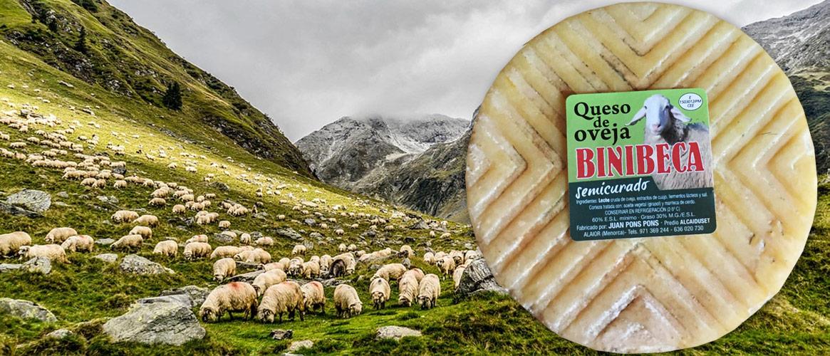 Binibeca Sheep Cheese Semi Ripe