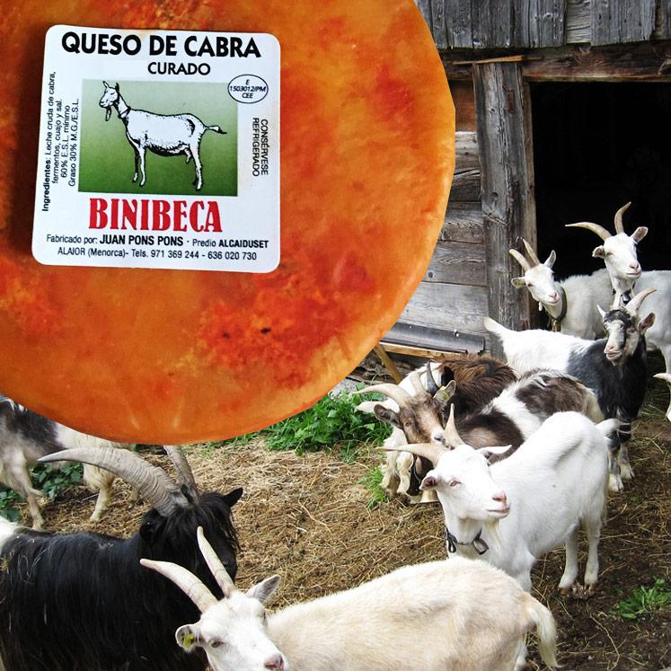Binibeca Ziegenkäse Reif