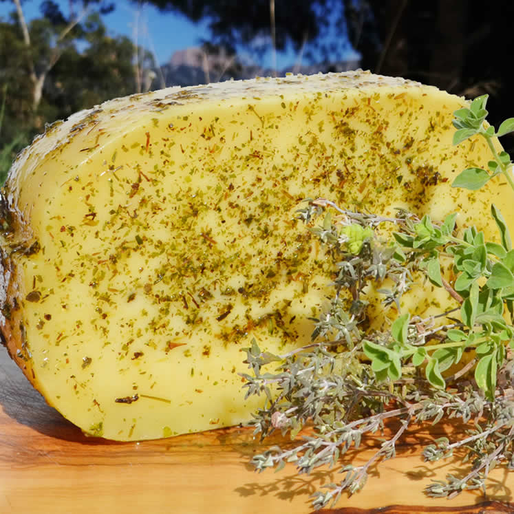 Burguera Cowmilk cheese semi matured with herbs