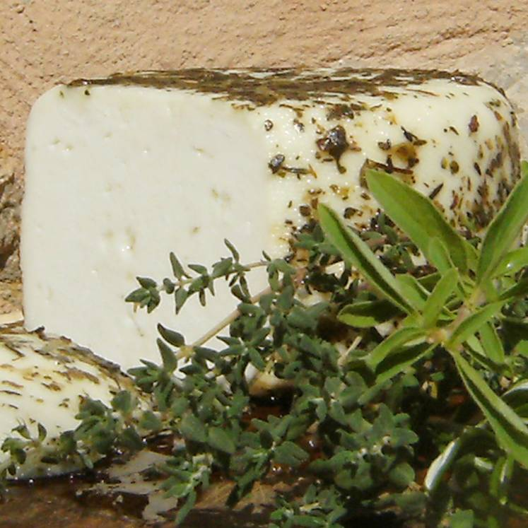 Goat cheese semi matured with herbs