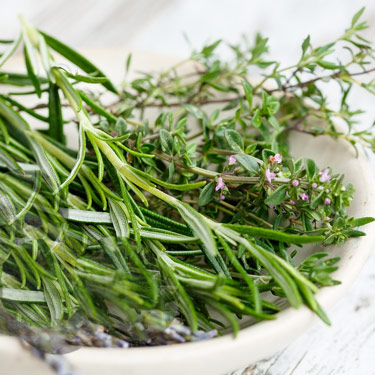 Herbs from balearic Islands
