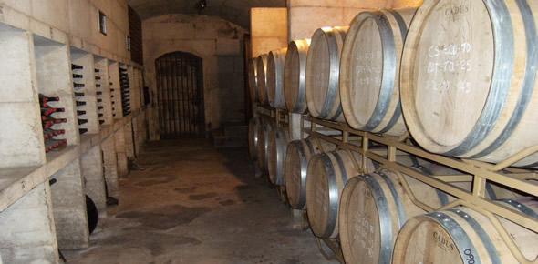 Wein aus Mallorca probieren
