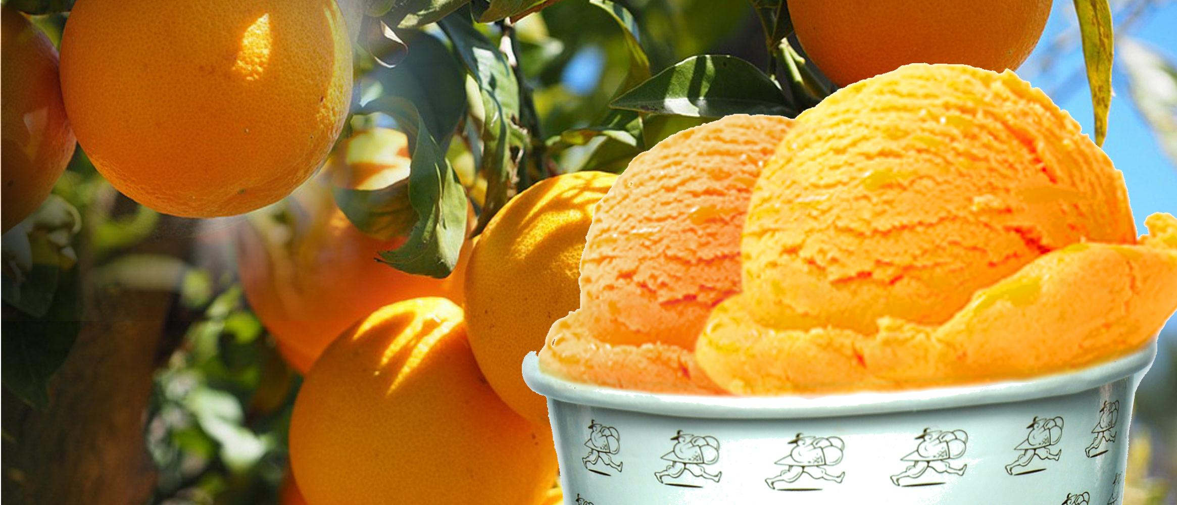 Mit Orangen aus dem Tal von Sóller